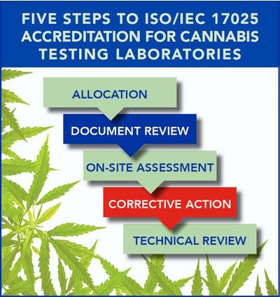 Cannabis Process Stesp-20190306