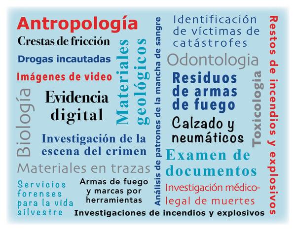 forensic disciplines-ES