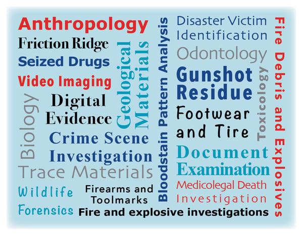 forensic disciplines